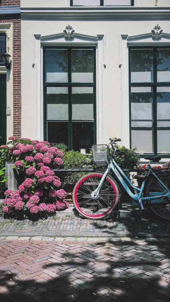 Een van de leukste tips voor een dagje Leiden is een stadswandeling met gids