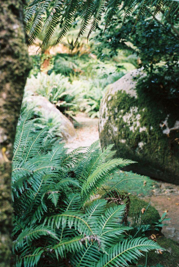 Struinen door de tuinen van de paleizen