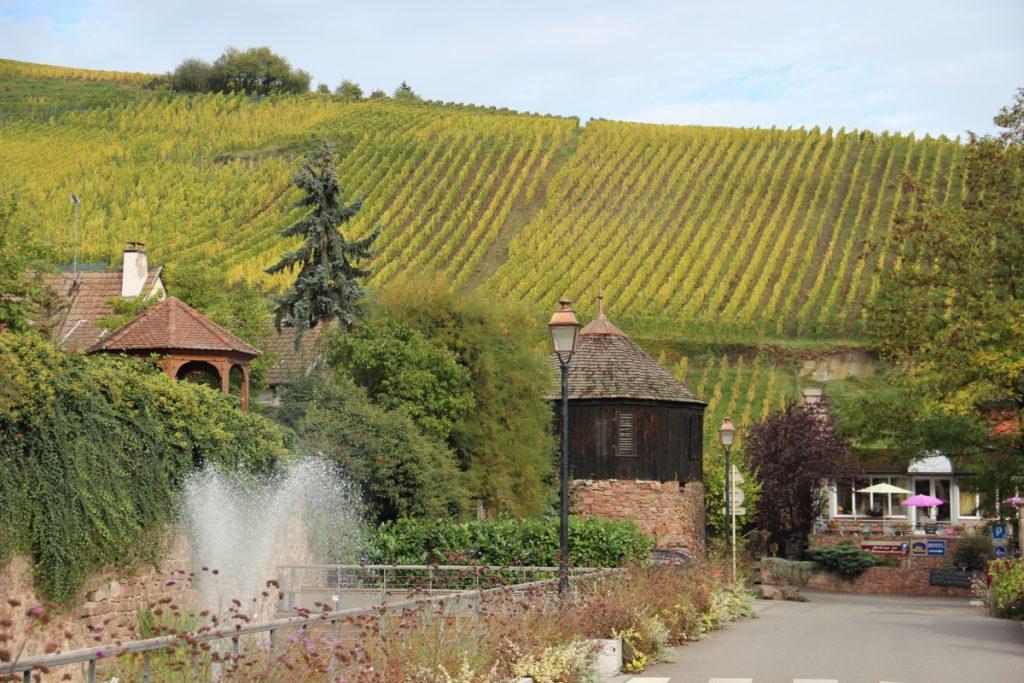 Wijn proeven in de Vogezen is een van de leukste activiteiten om te doen