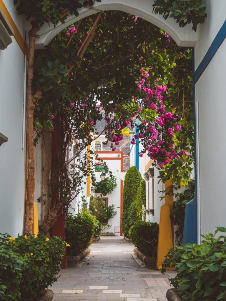 Kleurrijke bloemen in Puerto de Mogán