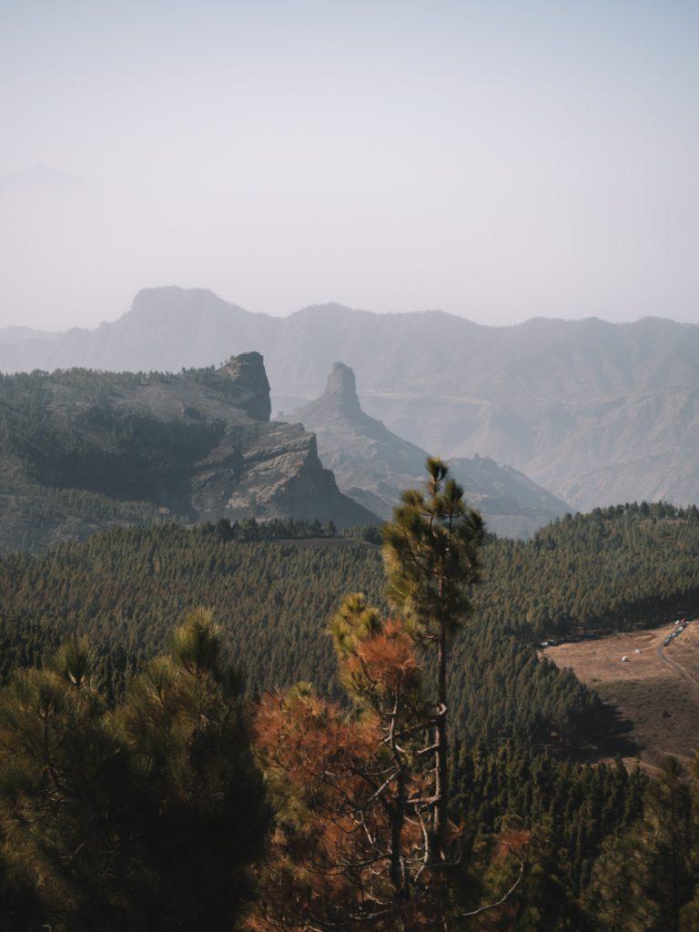 De natuur van Gran Canaria bij Roque Noble