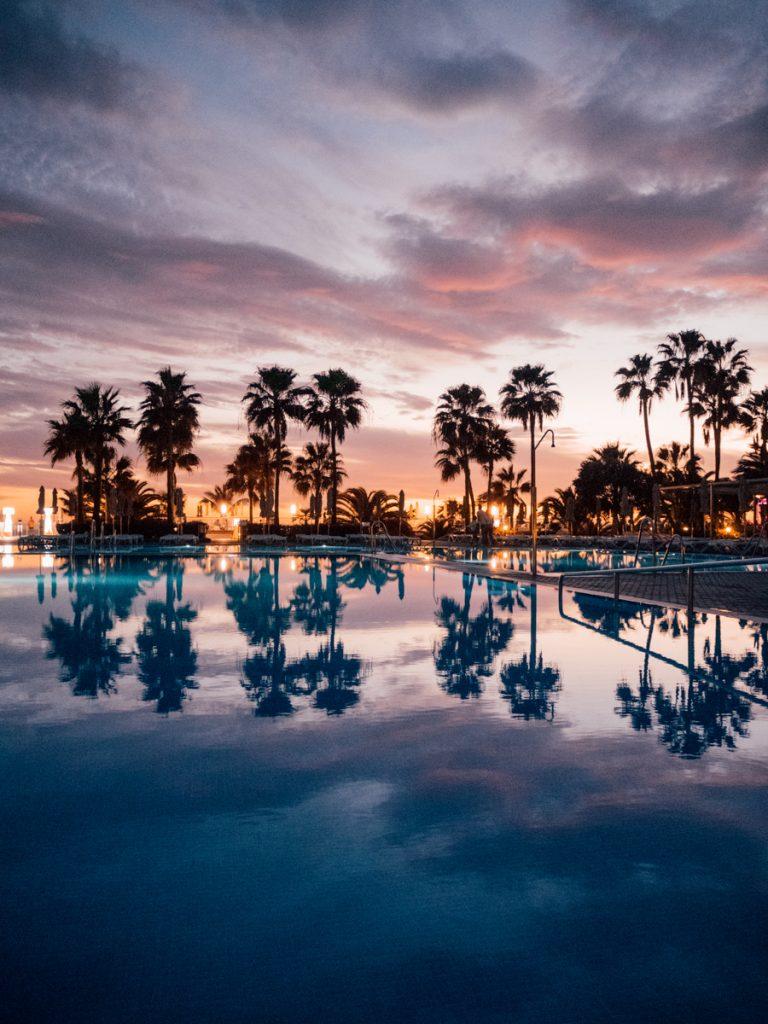 Palmbomen bij RIU Gran Canaria