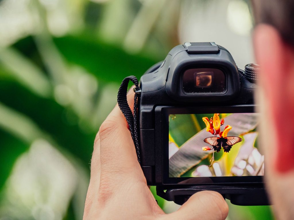 Doe een fotografieworkshop