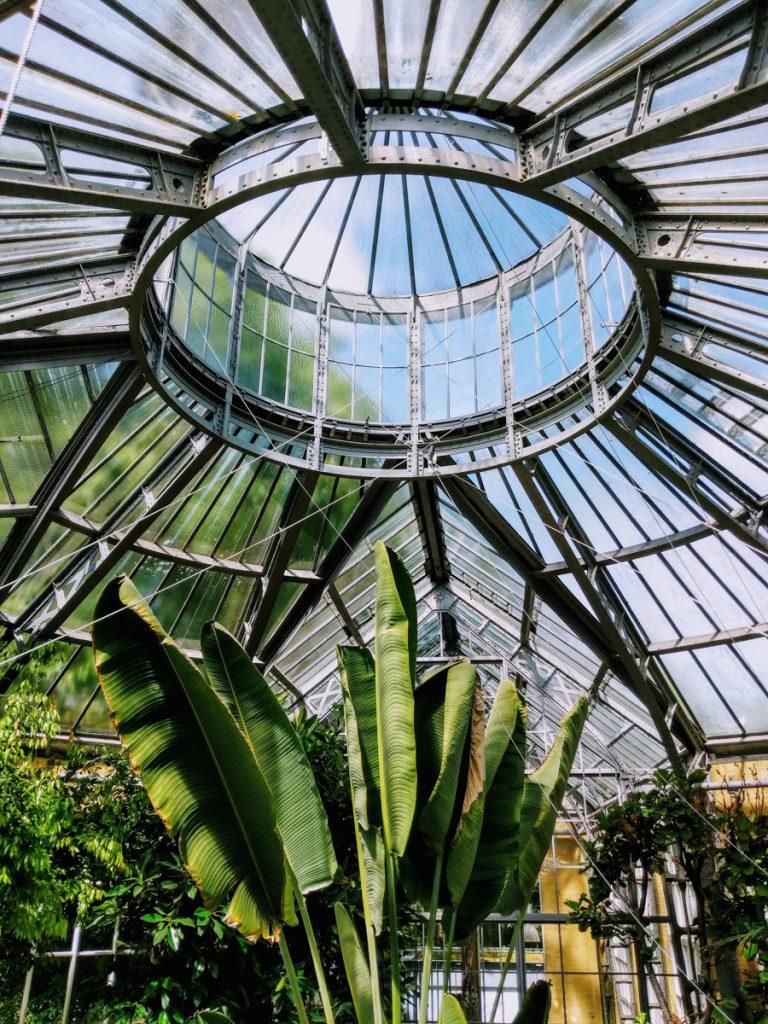 De prachtige glazen koepel met planten in Hortus Botanicus