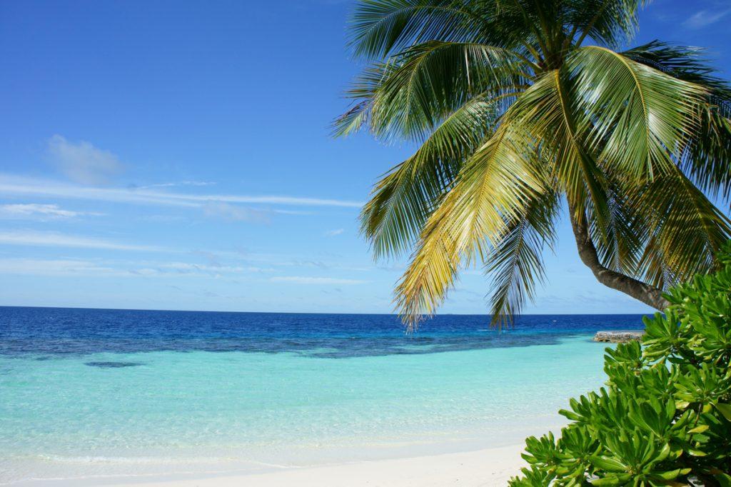 Het paradijselijke strand bij Karimunjawa Island