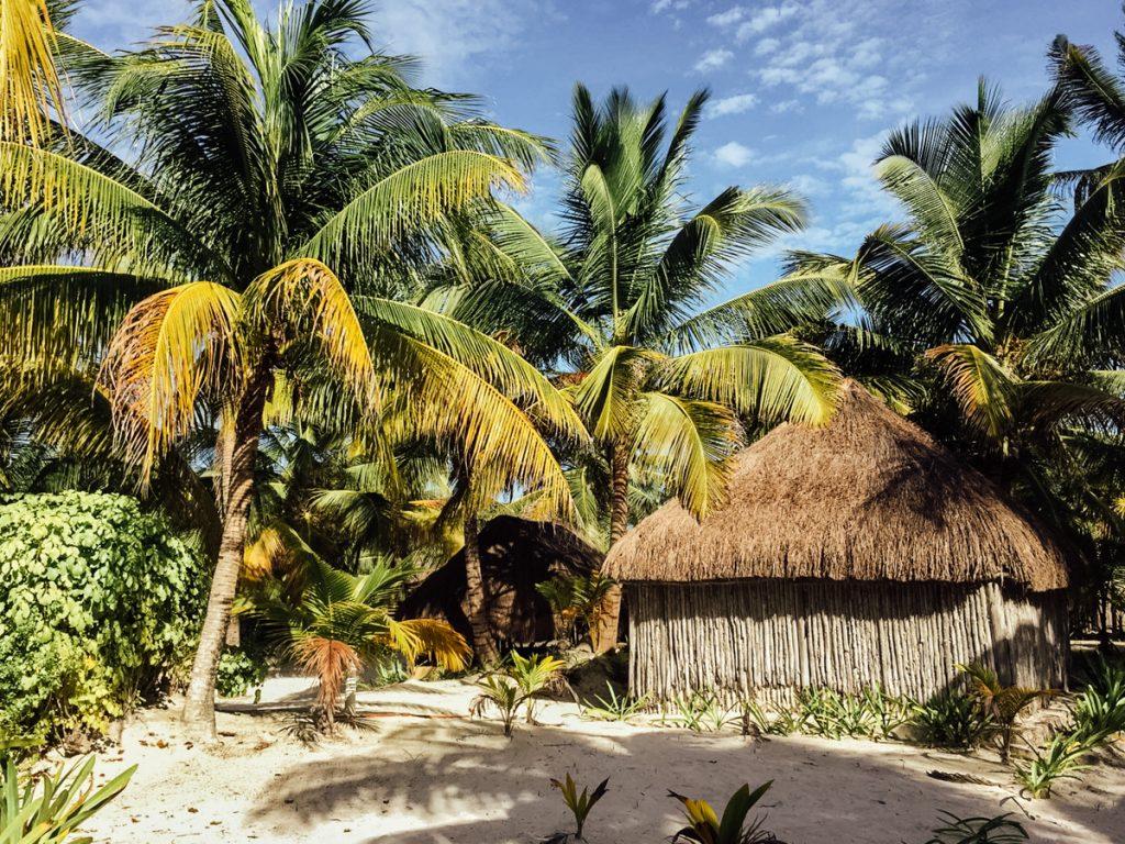 Een bungalow tussen de palmbomen in Tulum, Mexico