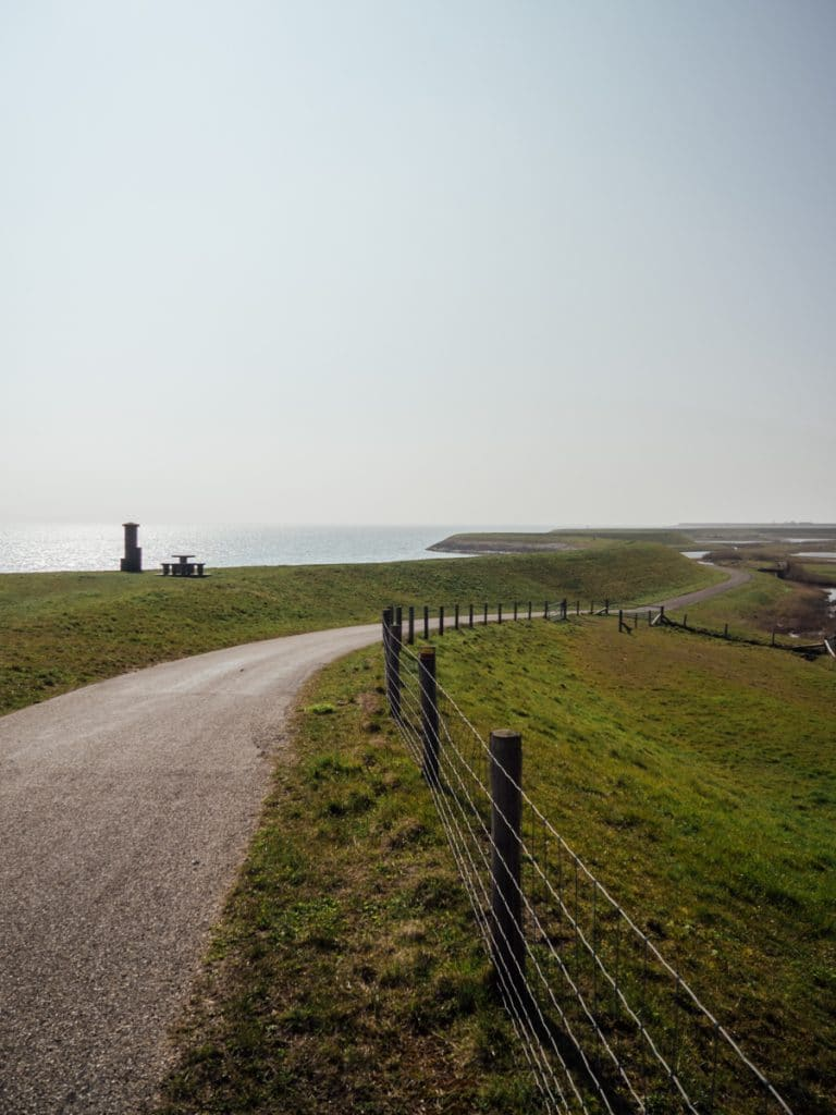De vogelkijkroute op Texel