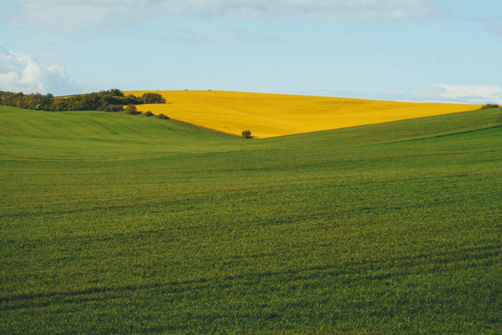 De beroemde landschappen van Moravië: glooiende heuvels met prachtige kleuren.